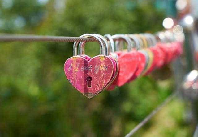 Eine neue Liebe wartet!
